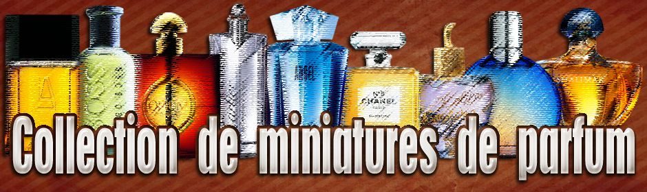 collection de miniatures de parfum